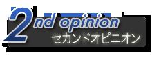 セカンド・オピニオン、スポット相談